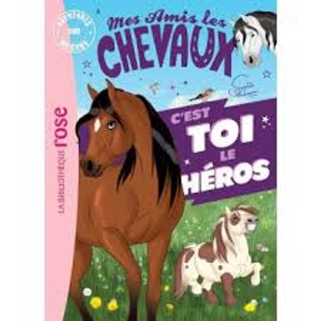 Mes amis les chevaux : c'est toi le héros !   