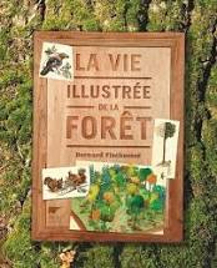 La vie illustrée de la forêt |